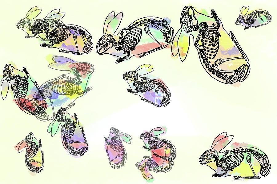 Pop Goes The Rabbit 2 Digital Art