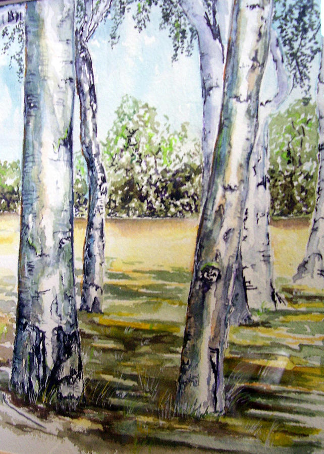 Poplar Painting - Poplar Tree   by Paul Sandilands