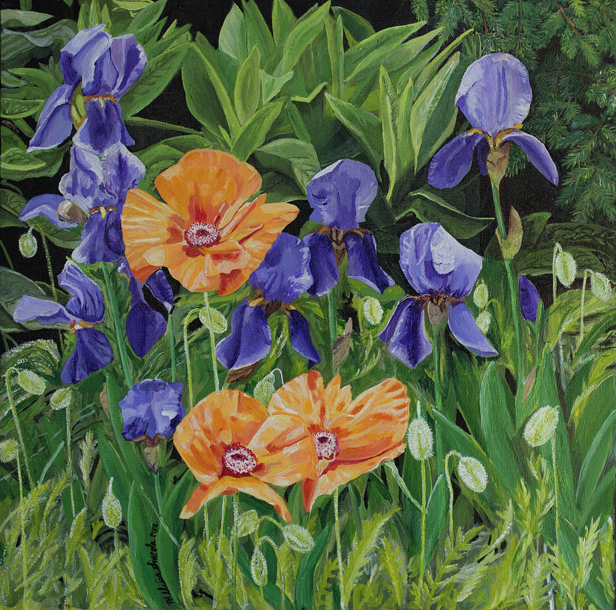 Poppies and Irises by MKD Lincoln