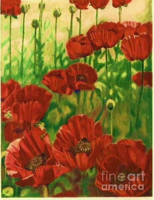 Poppies In The Shade by Trish Emery
