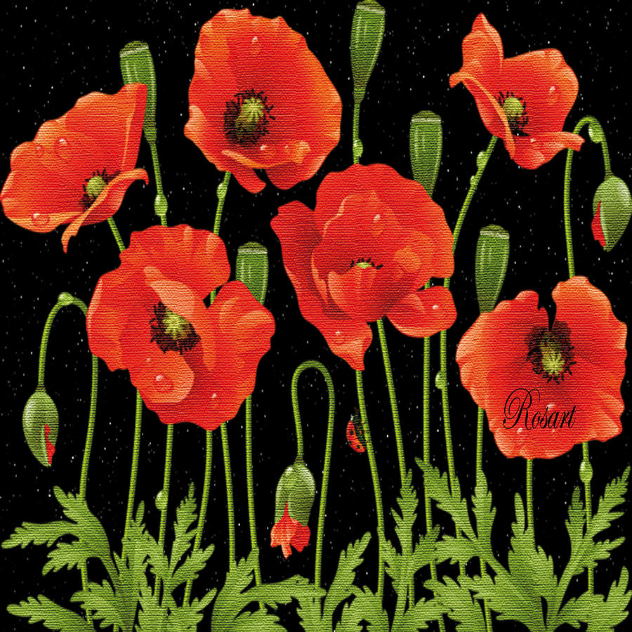Vintage Photograph - Poppies In The Starry Night by Rosa Maria Intorre