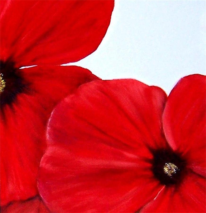 Floral Painting - Poppy 2 by Penny Everhart