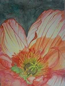 Poppy Painting - Poppy by Sue Steiner