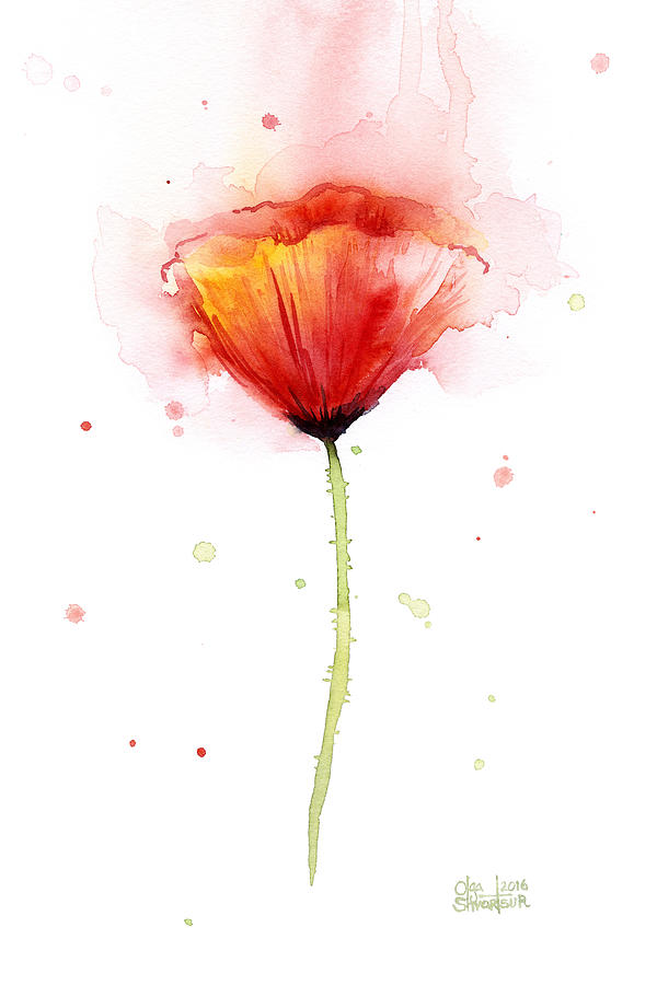 Poppy Watercolor Red Abstract Flower Painting by Olga ...