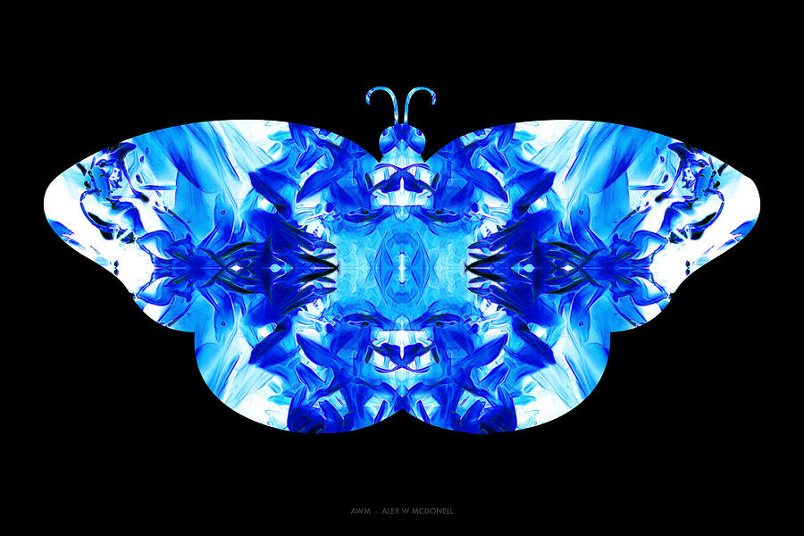 Porcelain Wings by Alex W McDonell