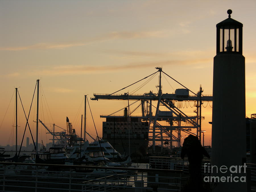 Oakland Photograph - Port Of Oakland Sunset by Carol Groenen