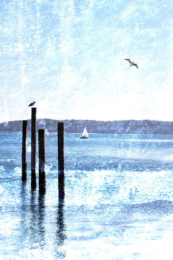 Port Townsend Mixed Media - Port Townsend Pilings by Carol Leigh