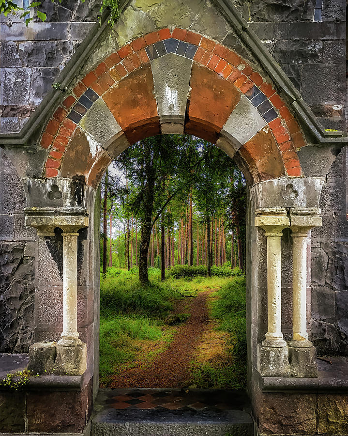 Ireland Photograph - Portal To Portumna Forest by James Truett