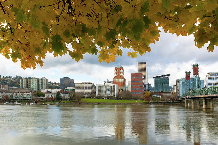 Portland Photograph - Portland City Skyline Under Fall Foliage by David Gn