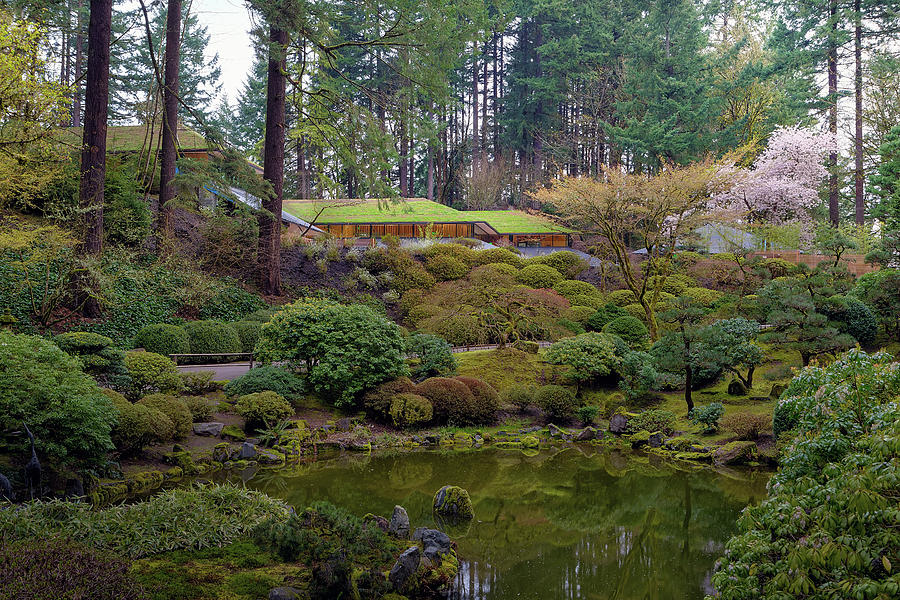 Portland Photograph - Portland Japanese Garden By The Lake by David Gn