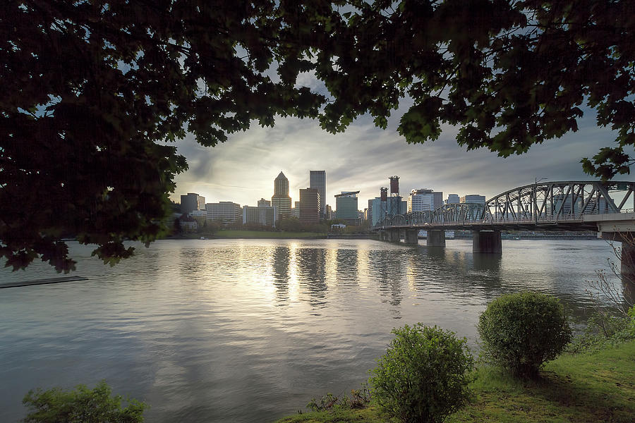 Portland Photograph - Portland Skyline Under the Trees at Sunset by David Gn