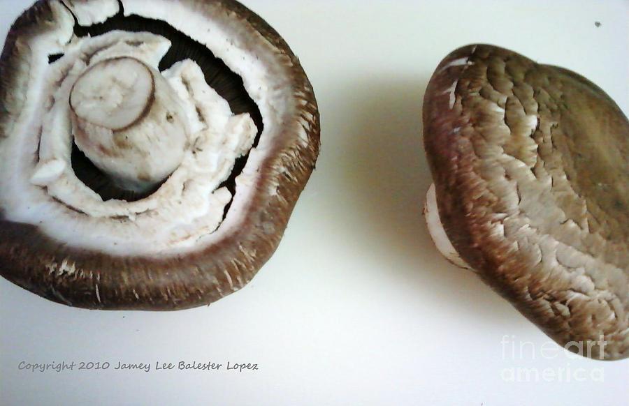 Portobello Mushrooms 2 Photograph