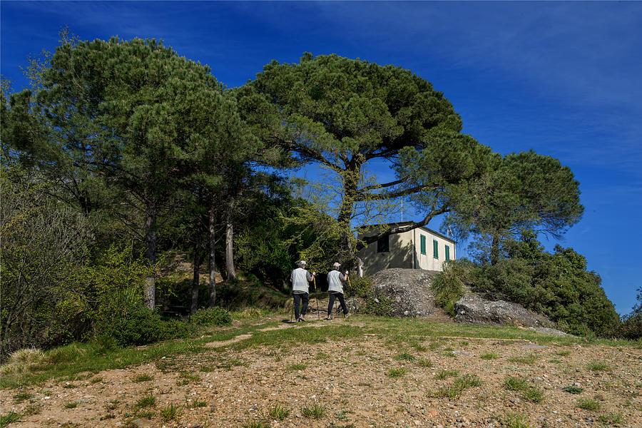 Portofino Photograph - Portofino Trekking Hiking And Walking In The Wood by Enrico Pelos
