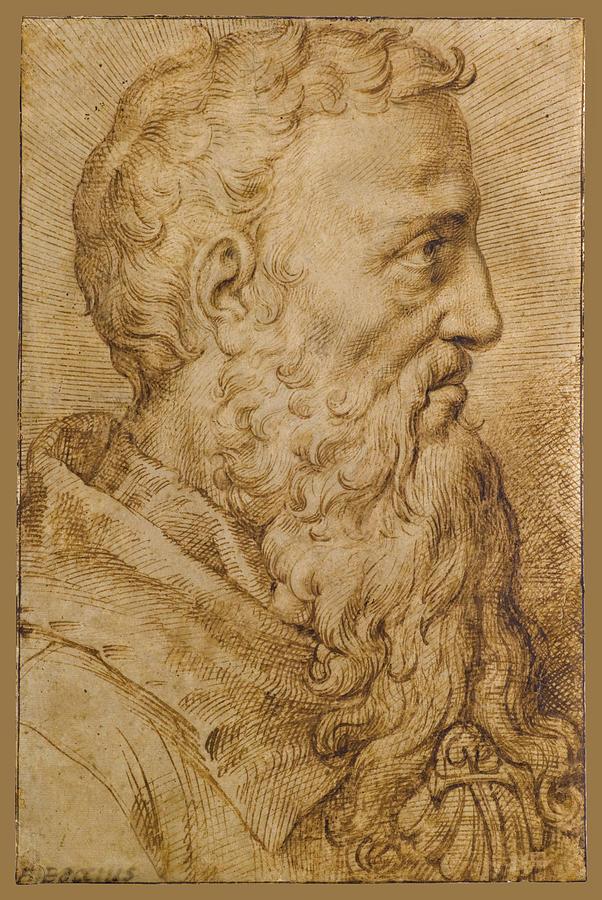Bearded Man Drawing - Portrait Of Baccio Bandinelli In Profile To The Right by Bartolomeo Passerotti