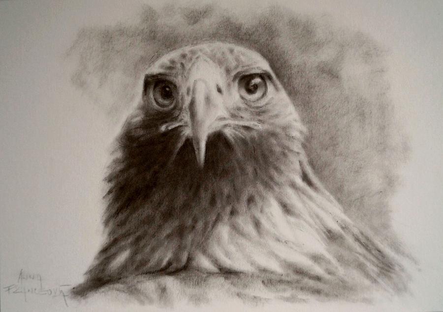 Kazachstan Painting - Portrait of eagle by Anna Franceova