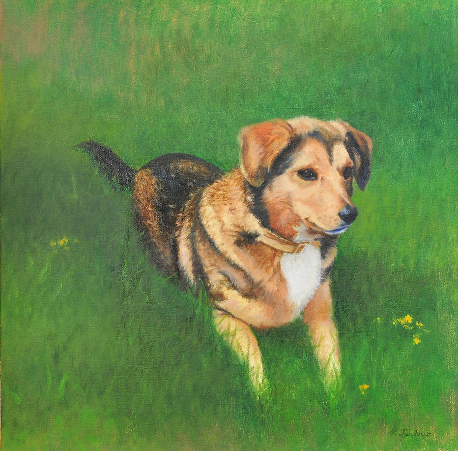 Dog Painting - Portrait Of Kecia by Phyllis Tarlow