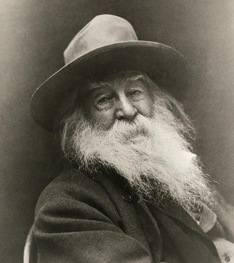 1870 Photograph - Portrait Of Walt Whitman by George Cox