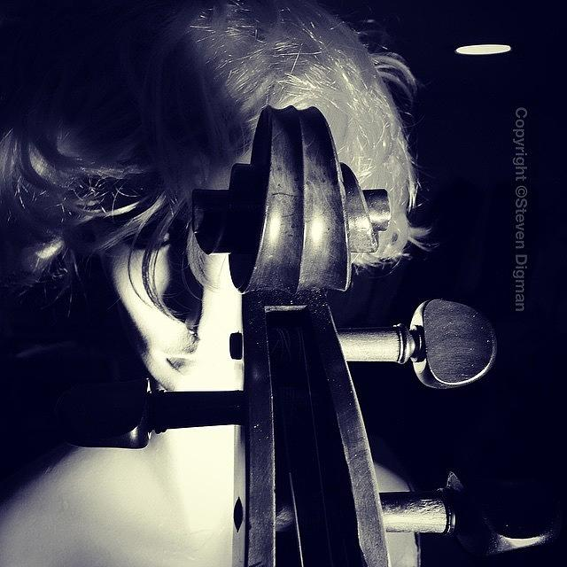 Cello Photograph - The Portraits   by Steven Digman