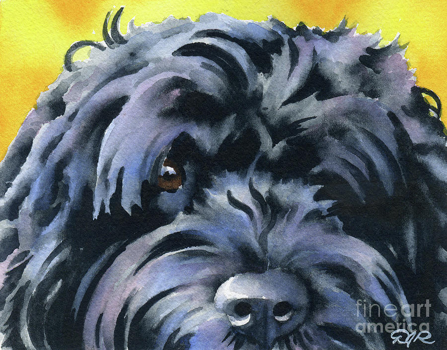 Portuguese Painting - Portuguese Water Dog  by David Rogers