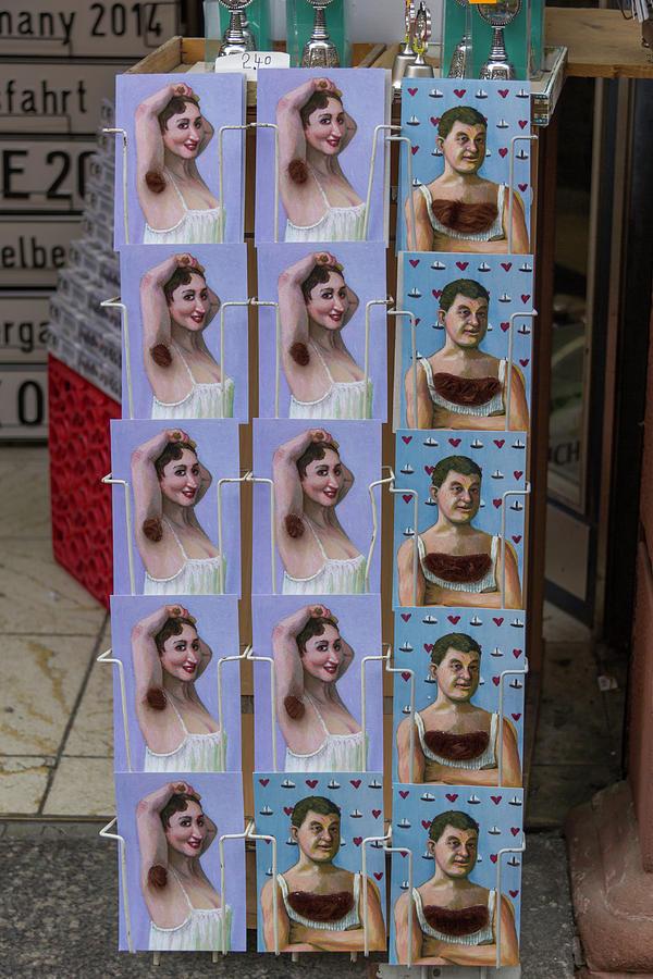 2014 Photograph - Postcards From Heidelberg by Teresa Mucha