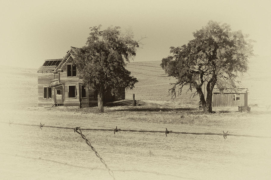 Abandoned Photograph - Barbed Wire - No Trespassing by Gej Jones