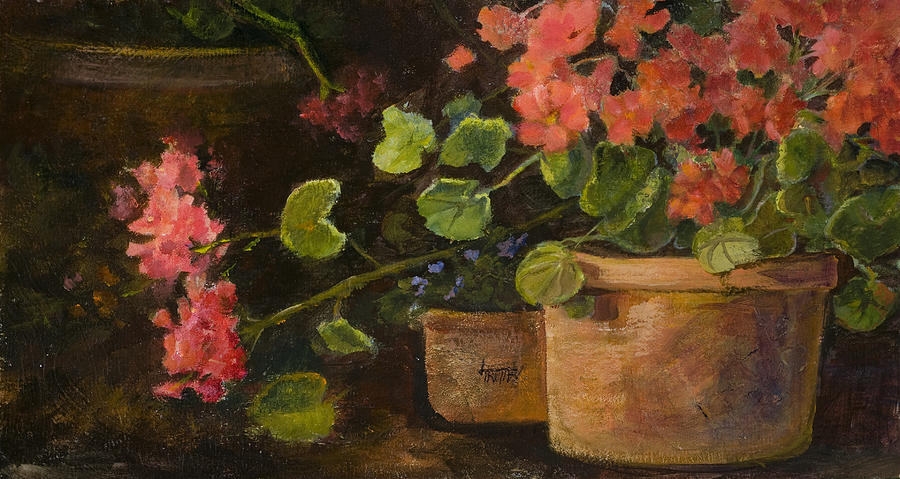 Flowers Painting - Pots Of Geraniums by Jimmie Trotter