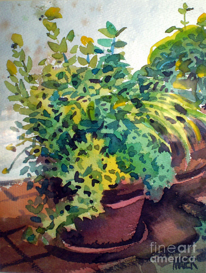 Herbs Painting - Potted Herbs by Donald Maier