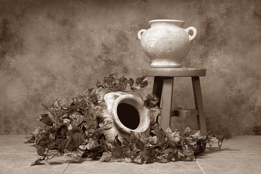 Ivy Photograph - Pottery With Ivy I by Tom Mc Nemar