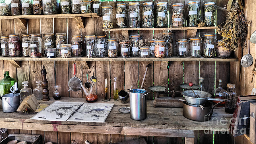 Potting Shed by Mick Flynn