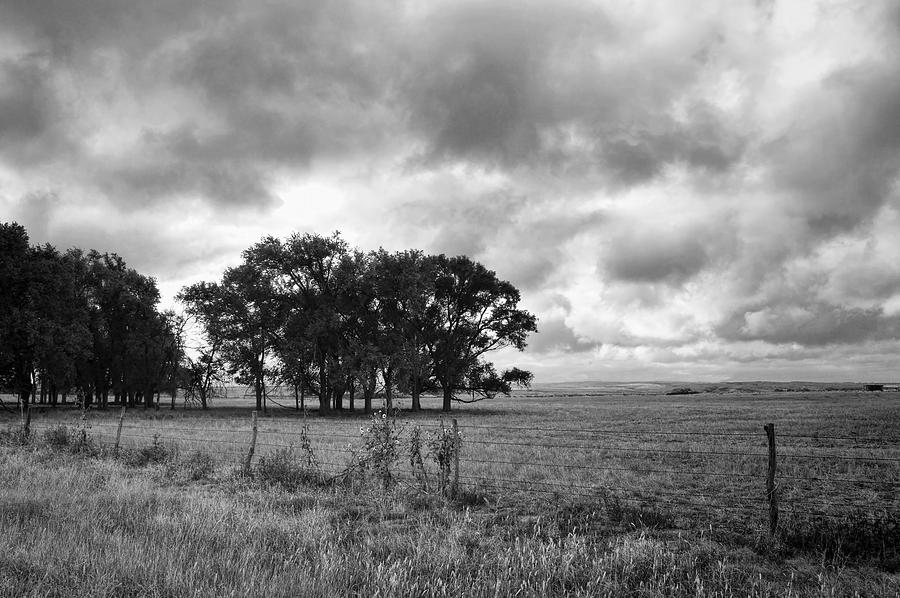 Landscape photograph prairie after the rain black and white landscape photography by ann powell
