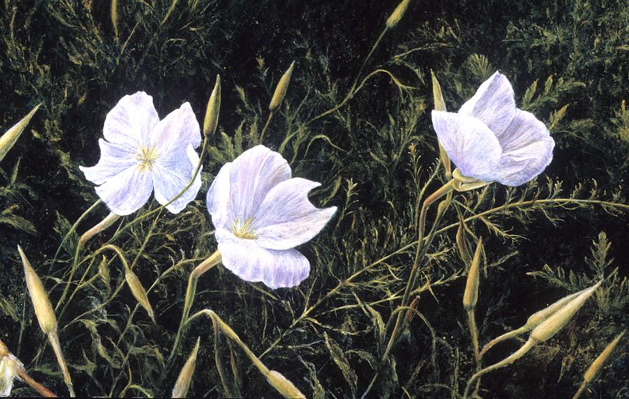 Floral Painting - Prairie Blossoms by Janet Landrum