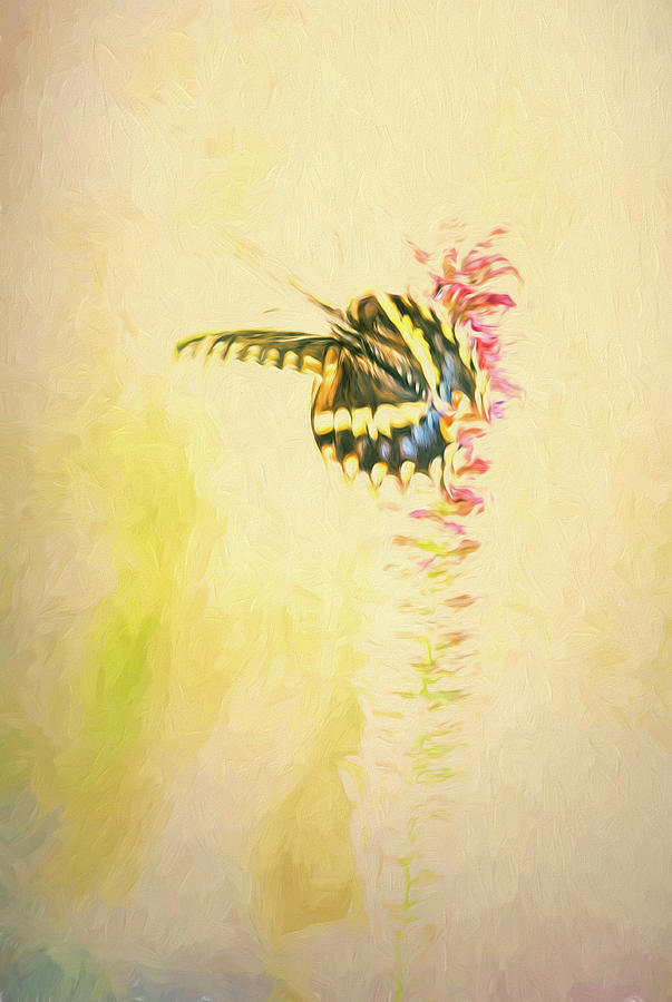 Prairie Butterfly 3 by Patricia Cale