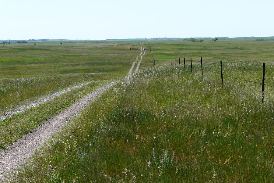 Landscape Photograph - Prairie by Ellen  Leigh