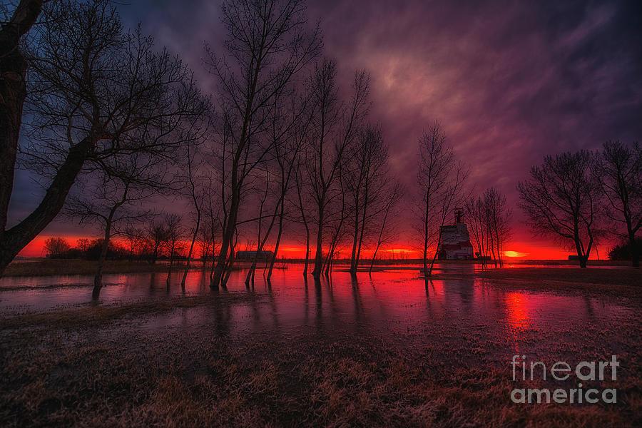 Canada Photograph - Prairie Glory by Ian McGregor