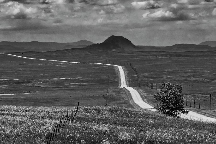 Prairie ribbon by Andy Crawford