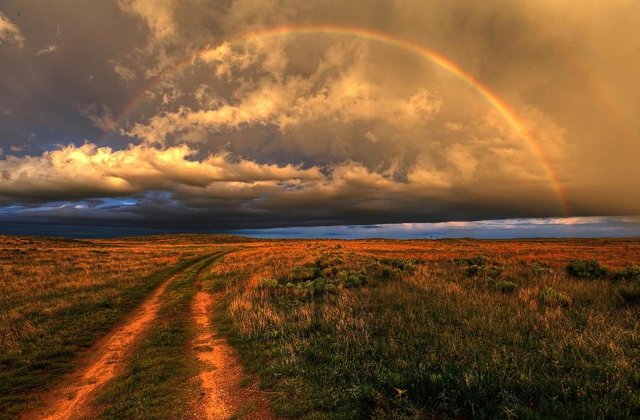 Prairie Roads Lead To Gold Photograph
