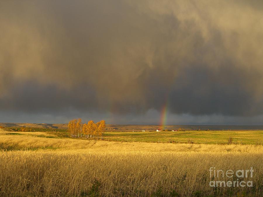 Alberta Photograph - Prairie Sky by Jim Thomson