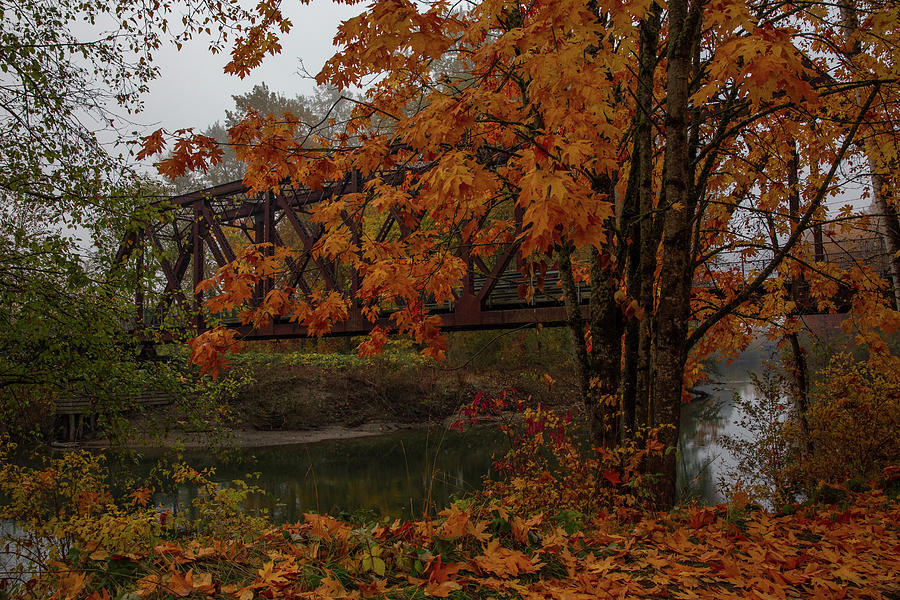 Pratt Truss Railroad Bridge Decked Out In Fall Colors Photograph