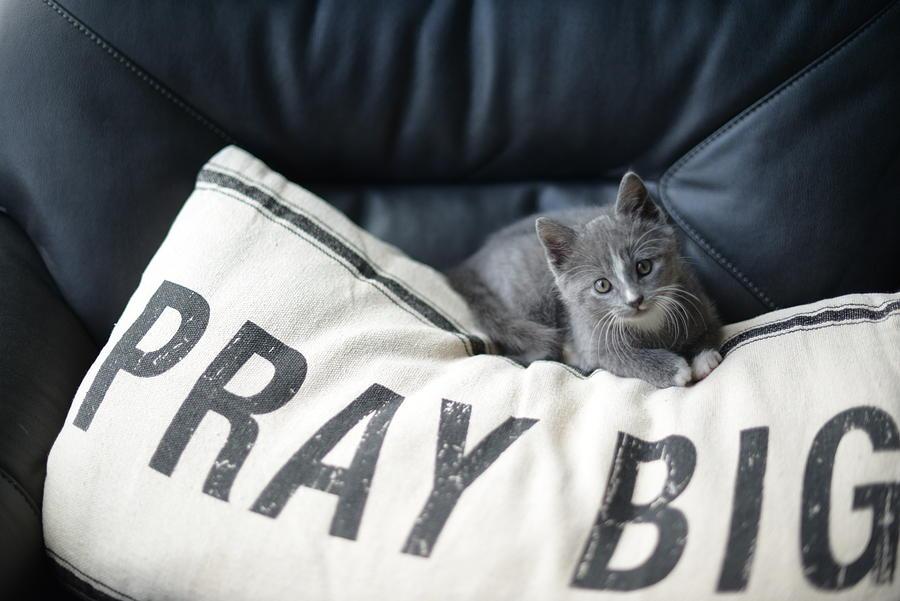 Pray Big Photograph