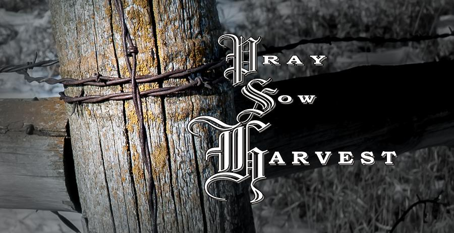Pray Sow Harvest by Troy Stapek