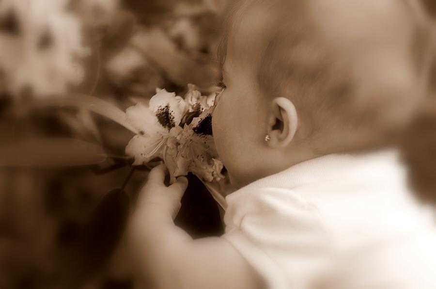 Sepia Photograph - Precious by Scott Gould