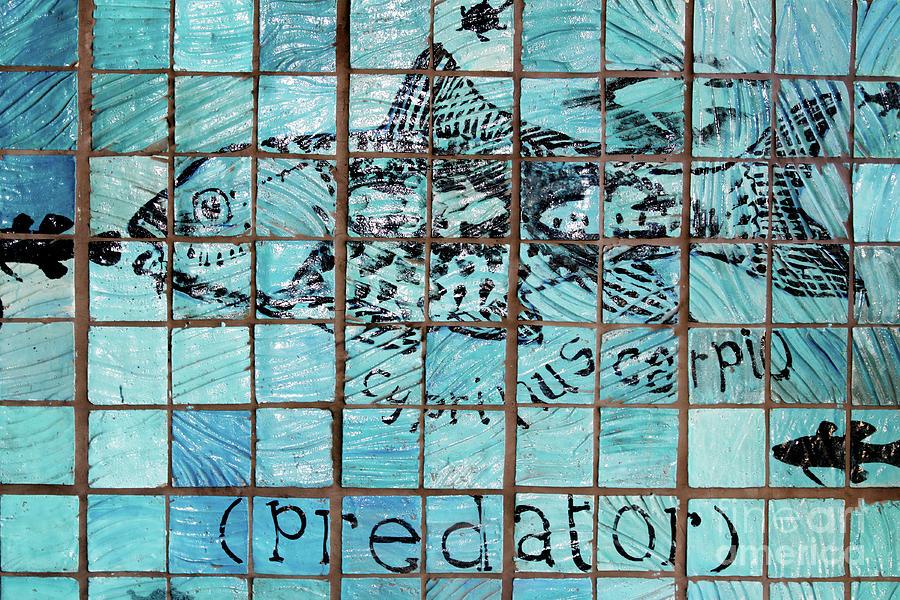 Predator Photograph - Predatile by Stephen Mitchell