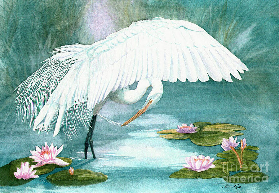 Egret Painting - Preening Egret by Pauline Ross
