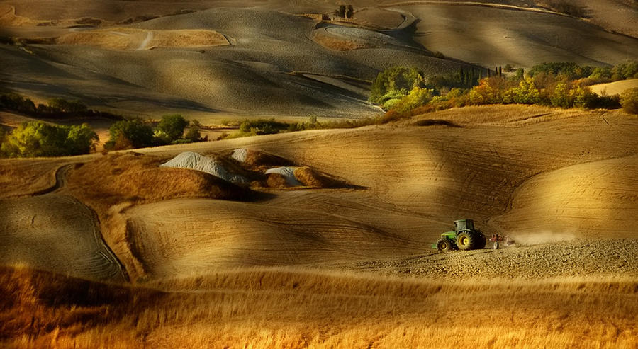 Tuscany Photograph - Preparation For Sowing - Volterra (pi) - Toscana - Italy by Antonio Grambone