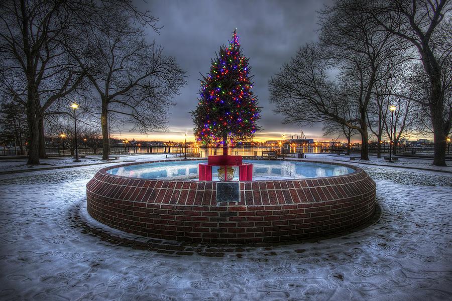 Prescott Photograph - Prescott Park Christmas Tree by Eric Gendron