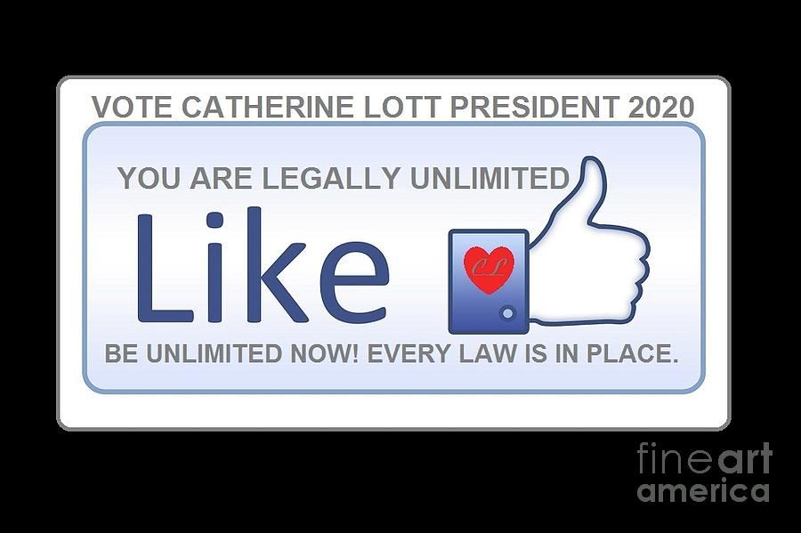 PRESIDENT 2020 by Catherine Lott