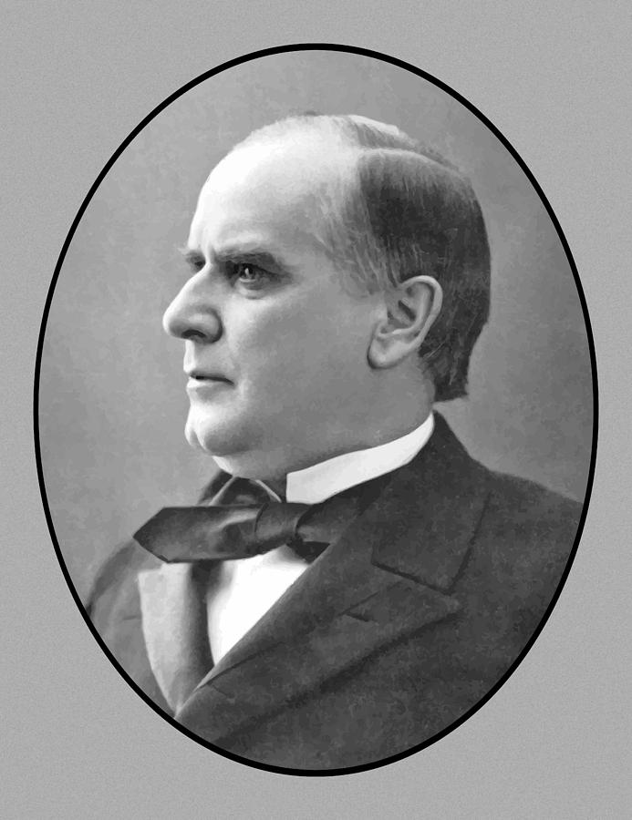 President Mckinley Painting - President Mckinley by War Is Hell Store