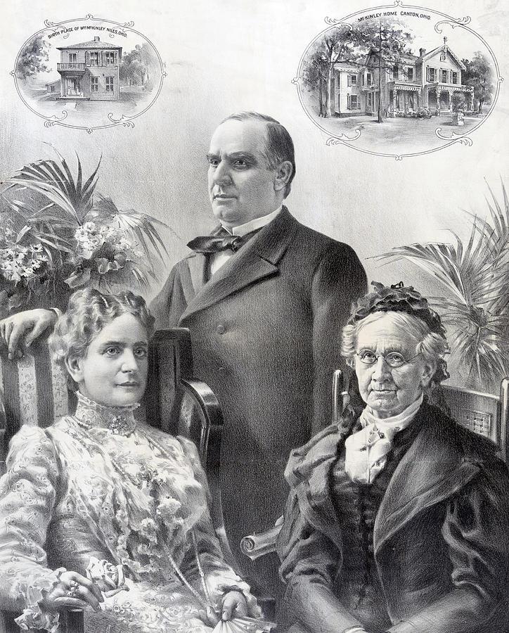 president william mckinley family tree - 724×900