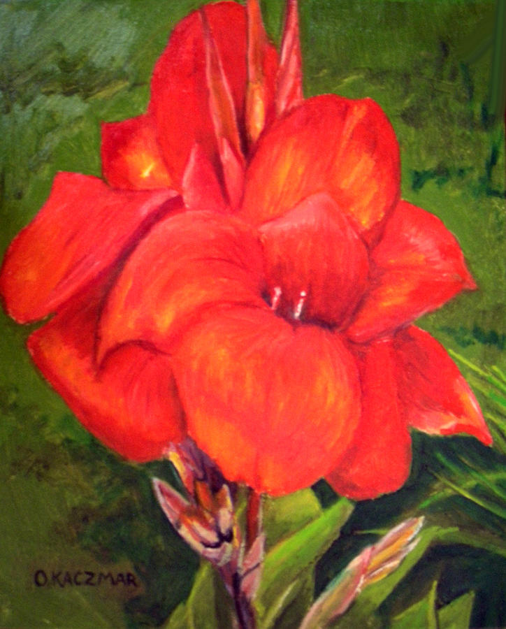 Flowers Painting - Presidential Canna by Olga Kaczmar