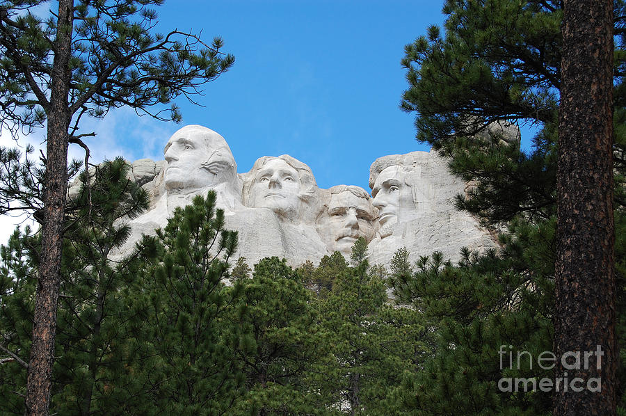 South Dakota Photograph - Presidents Of Mount Rushmore Framed By South Dakota Forest Trees by Shawn OBrien